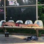 Dorm boschetarii în stație – demonteaz-o!
